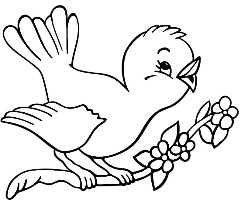 disegno di uccellino da colorare