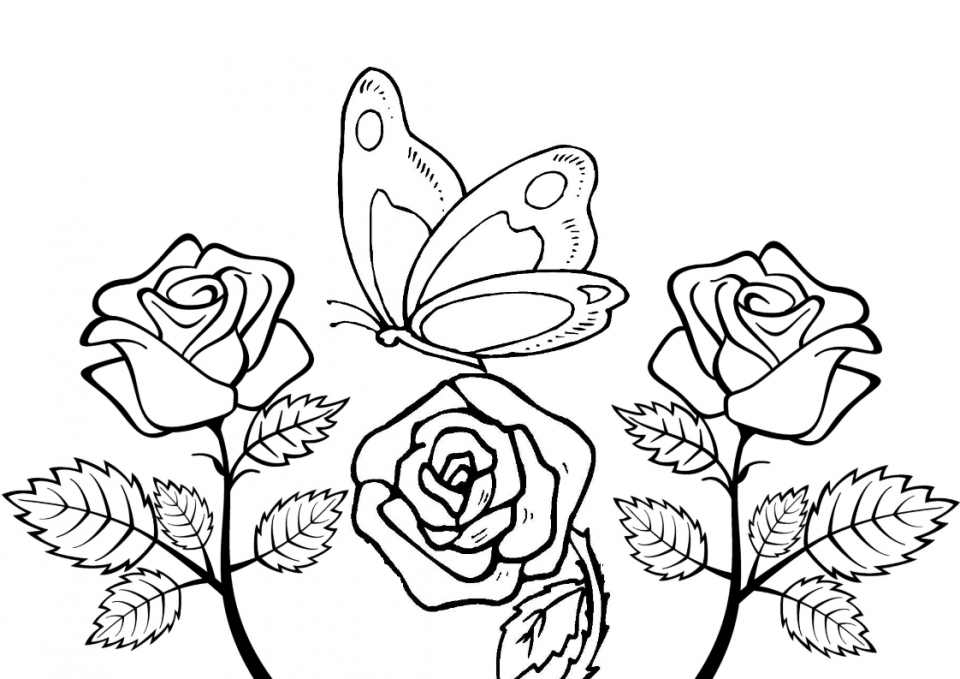 Fiori da colorare disegni da stampare a tema fiori per for Colorare le rose