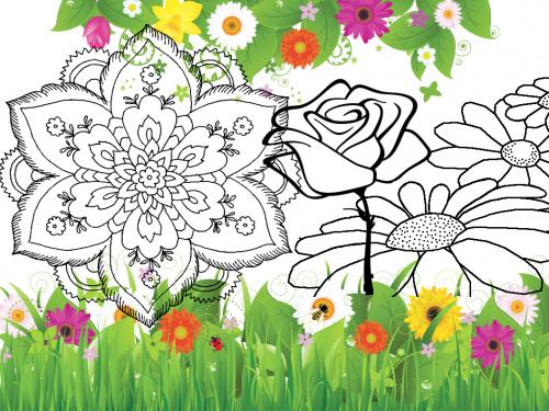 Fiori da colorare – Disegni da stampare