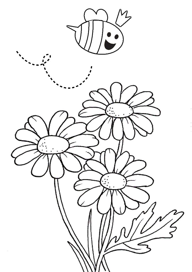 fiori da colorare disegni da stampare