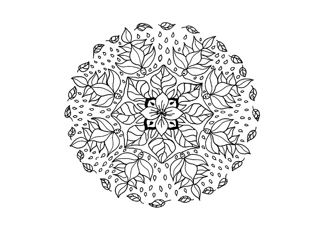 Disegni Da Colorare Mandala Fiori Migliori Pagine Da Colorare E