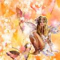 le farfalle fiorite copertina