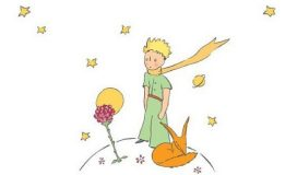 il valore delle illustrazioni del piccolo principe